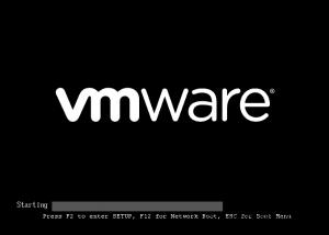 VMware BIOS